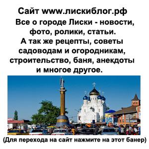 Блог Натальи Гончаровой о городе Лиски